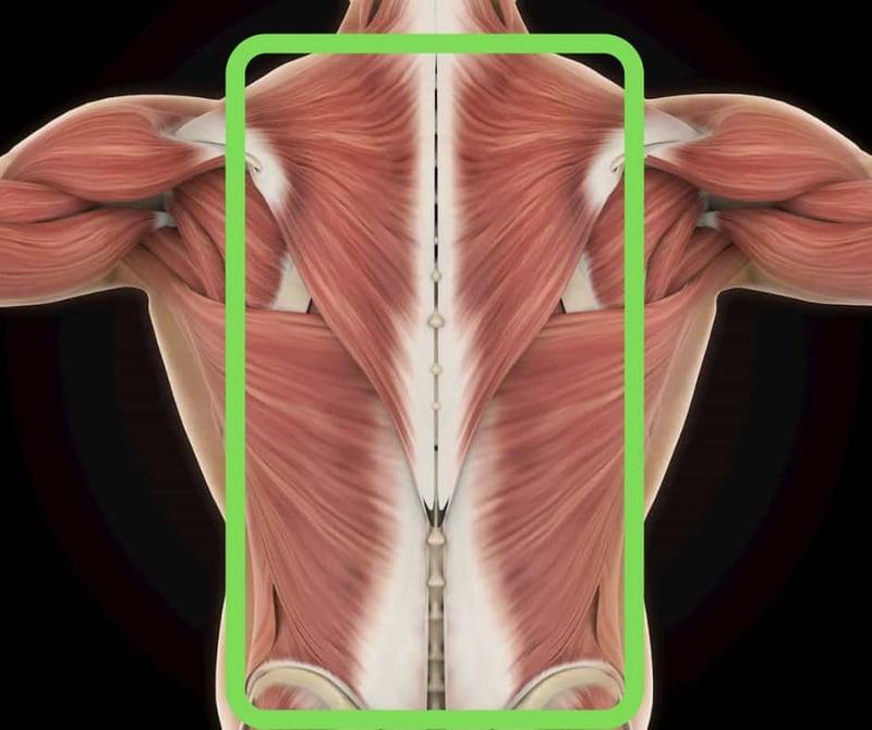 Ondt i ryggen - hvor gør det ondt?