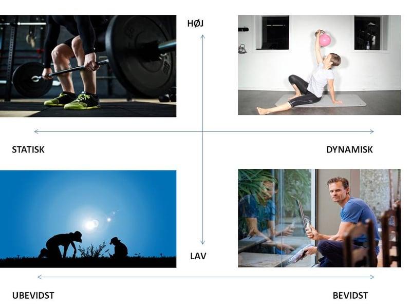 Disse elementer bør din core træning indeholde
