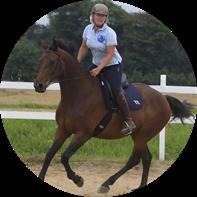 Hest i træning ved Dagmars Hestetræning